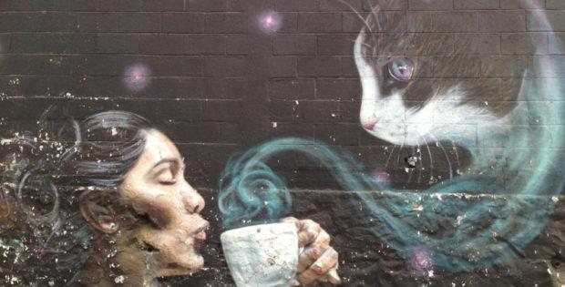 yáñez street art walk graffiti woman and cat